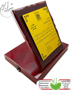 لوح سپاس فرهنگی برای مقام برتر جشنواره ده فجر بانک صنعت و معدن