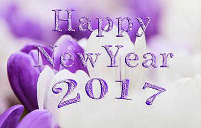 آغاز سال جدید میلادی